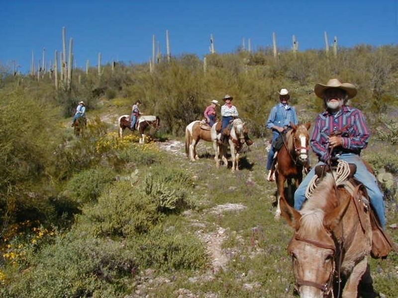 Most scenic ride in Arizona. Sonoran Desert trail rides.